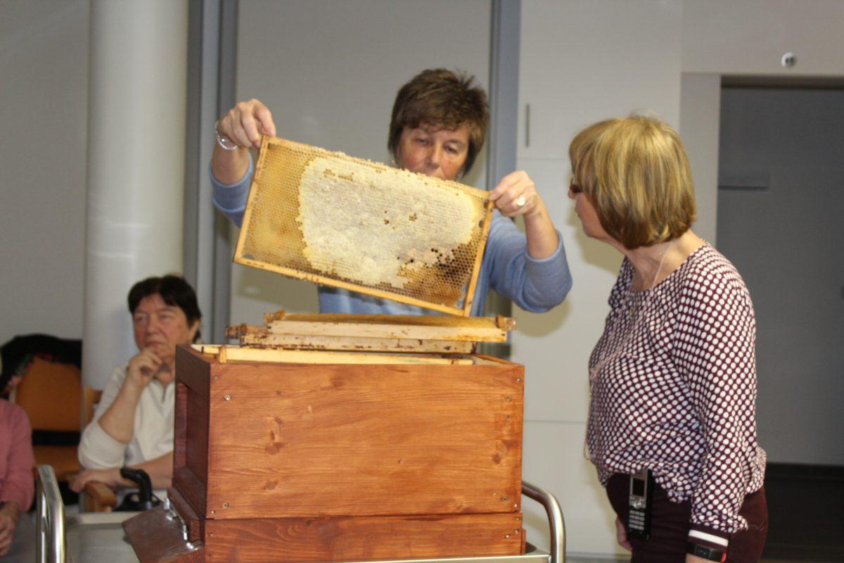 Das Jahr der fleißigen Honigbiene